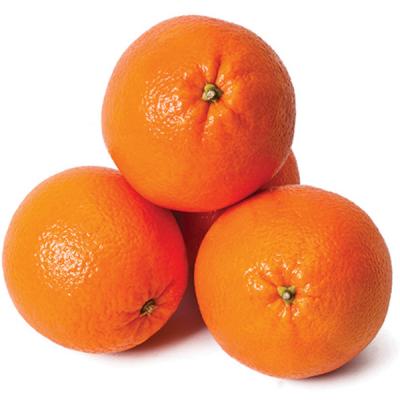 Oranges - pack of 5