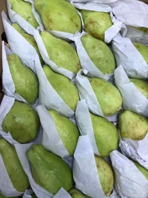 Fresh Guava (single piece)